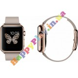 Apple Watch 38mm 18-Karat Rose Gold Case with Rose Gray Modern Buckle (MJ3K2LL/A)
